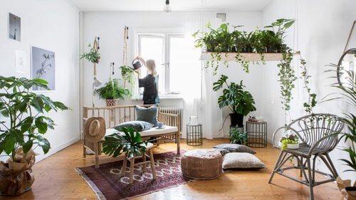 O que é Urban Jungle? Confira 9 dicas úteis para criar um ambiente encantador